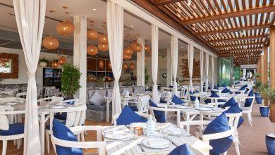 صورة مأكولات المطبخ اليوناني من مطعم أموس