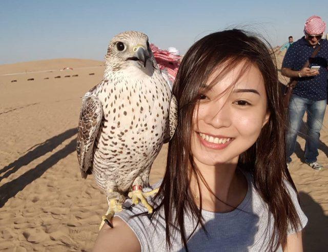 صور تذكارية مع الصقر Falcon selfie