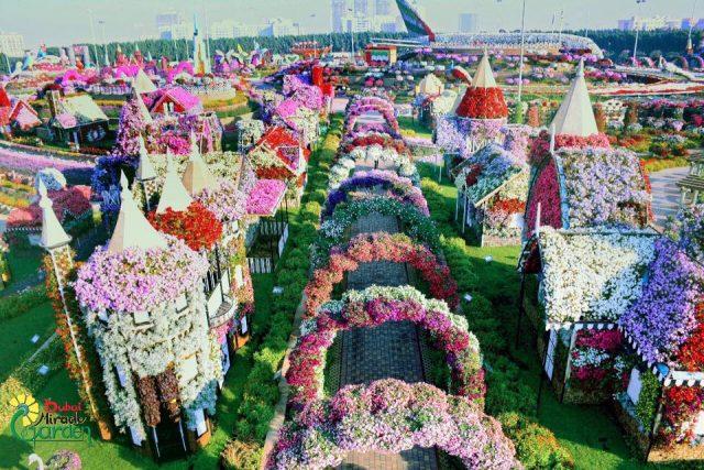 حديقة دبي ميراكل Dubai Miracle Garden