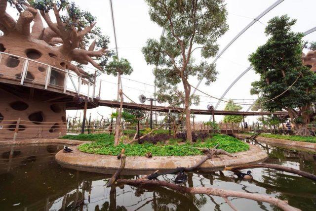دبي سفاري Dubai Safari