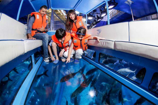 ركوب القارب ذو القاع الزجاجي Take a glass-bottom boat ride