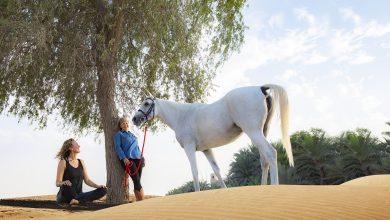 Photo of عرض اليوجا والاسترخاء من منتجع باب الشمس الصحراوي