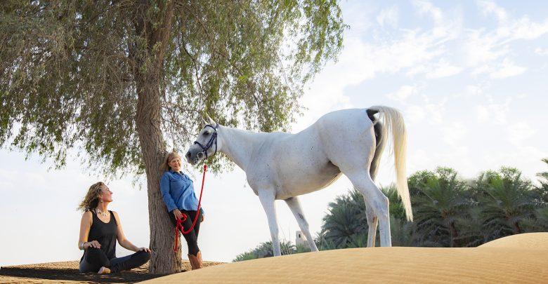 عرض اليوجا والاسترخاء من منتجع باب الشمس الصحراوي