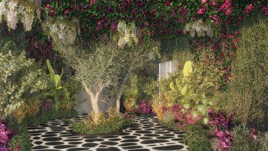 Photo of قريباً افتتاح مطعم أوبا اليوناني في دبي