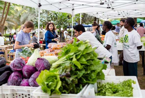 سوق المزارعين Farmers Market