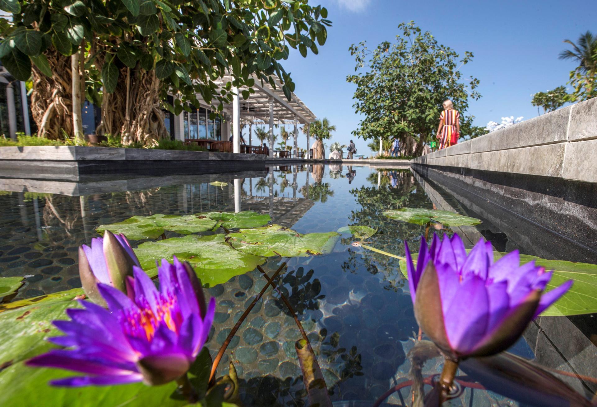 إفتتاح جزيرة بلووترزفي دبي