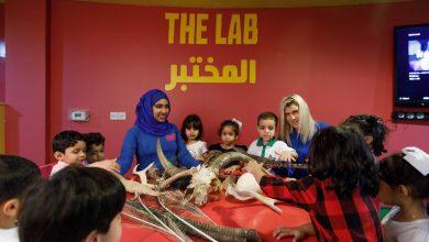 صورة مدرسة حديقة الحيوان للتعرف على الحياة البرية