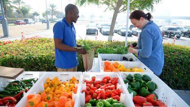 Photo of الموسم الثاني من سوق المزارعين في دبي فستيفال سيتي