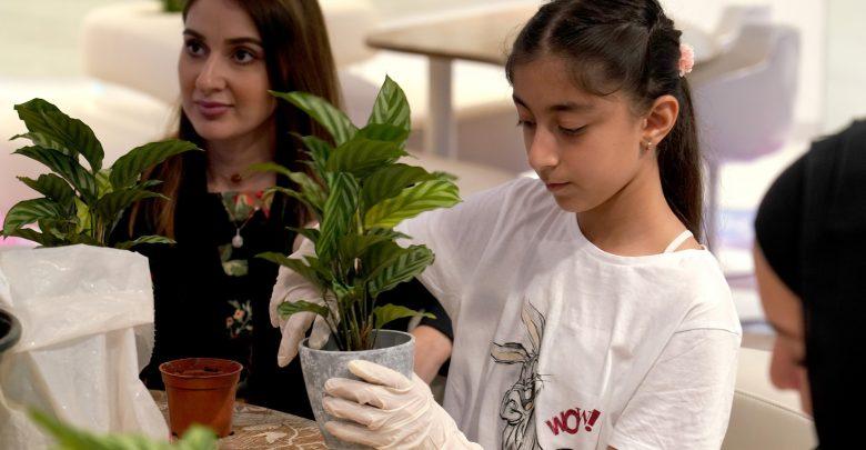 ورشة عمل للعناية بالنباتات المنزلية في جزيرة النور