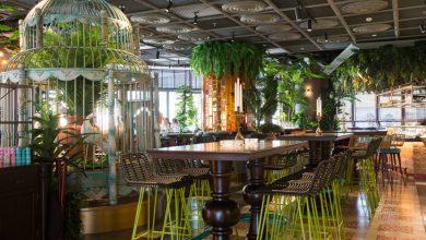 Photo of تعرف على مطعم ماما زونيا في دبي مارينا