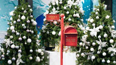 Photo of تعرف على سوق أعياد الميلاد في محلات روبنسونس