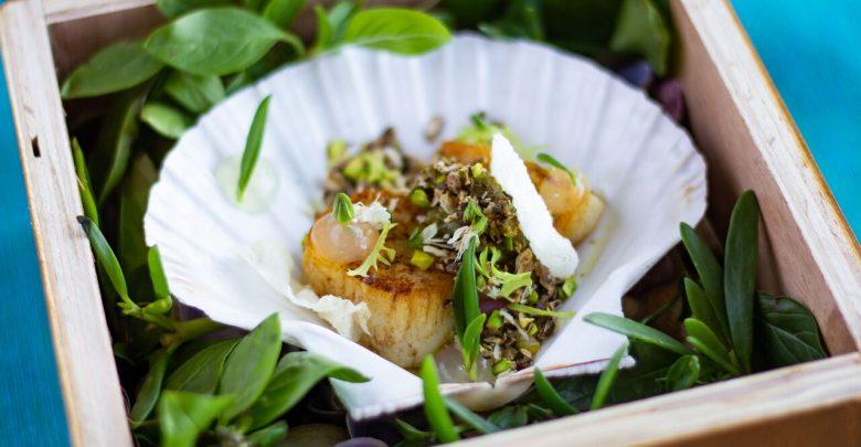 قوائم الطعام الجديدة في منتجع سيكس سينسيز زيغي باي
