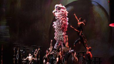 صورة باقة الطعام ومشاهدة عرض لابيرل في مدينة الحبتور