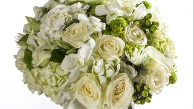 Photo of باقة الزهور إلى باب منزلك من أزهار أليسار