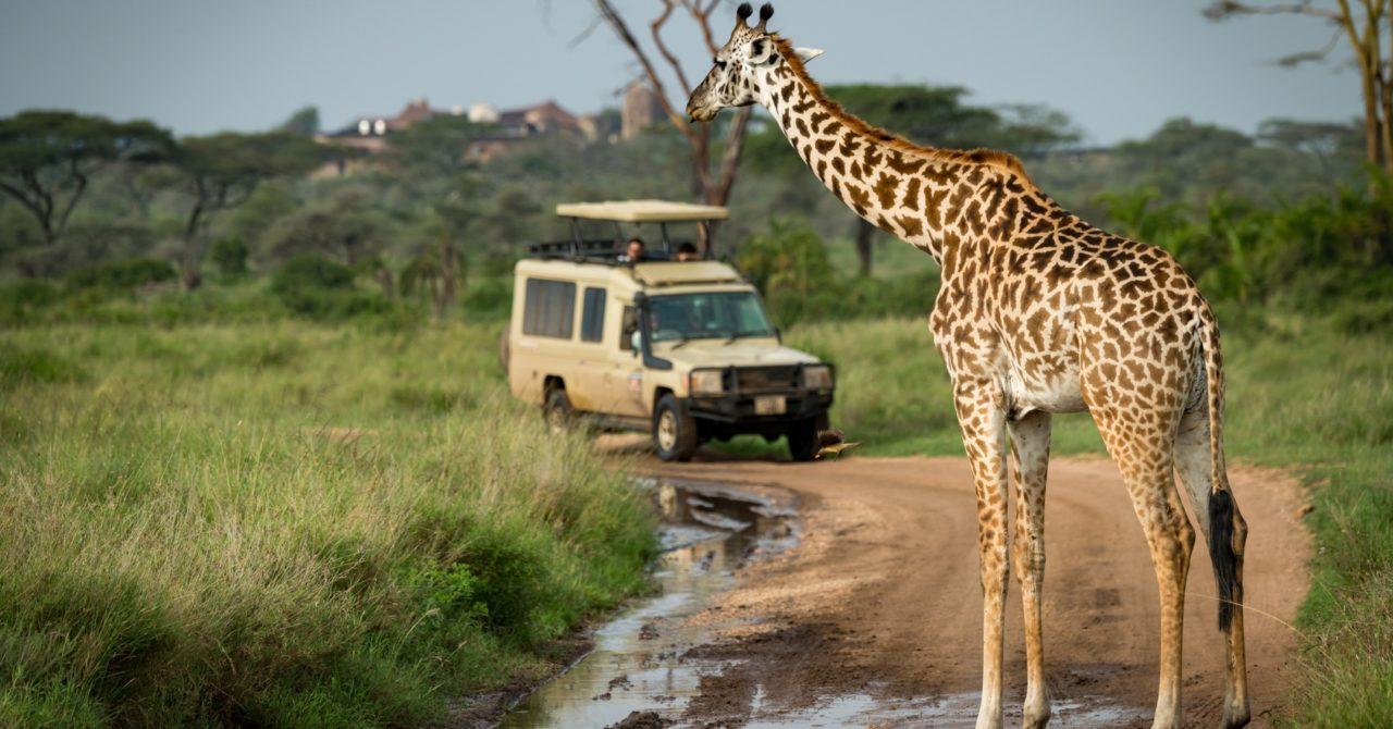 5 رحلات سفاري إفريقية لعشاق المغامرات