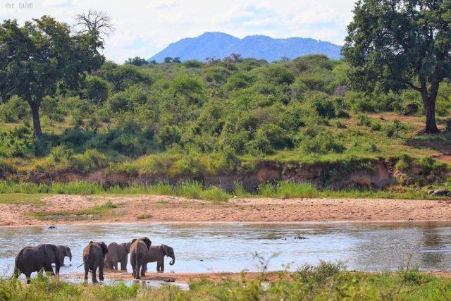 حديقة الملكة إليزابيث الوطنية في أوغندا Queen Elizabeth National Park in Uganda