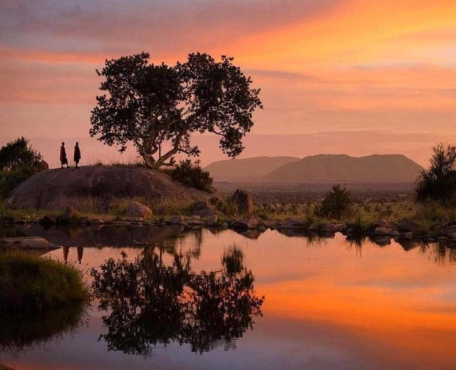 حديقة سيرينجيتي الوطنية في تنزانيا Serengeti National Park in Tanzania