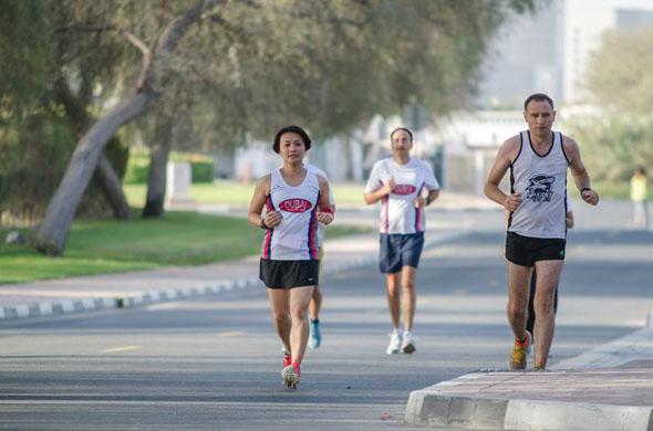 مخطط دبي كريكThe Dubai Creek Striders