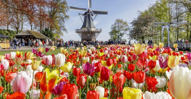 جدول سياحي في امستردام
