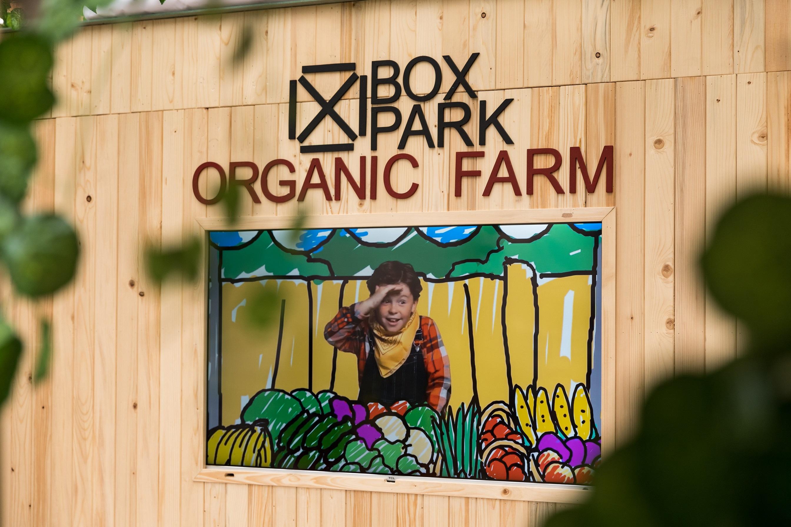 بوكس بارك يُعلم الأطفال طرق الزراعة العضوية والأكل الصحي في دبي