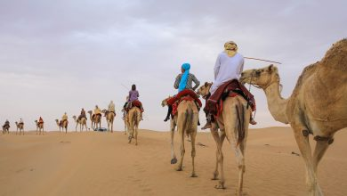 Photo of لا تفوت تجربة الحياة البدوية في المرموم