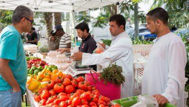 Photo of دبي تستضيف النسخة العاشرة من سوق المزارعين فارمرز ماركت