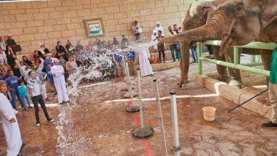 Photo of حديقة الإمارات للحيوانات تحتفل بيوم الطفل الإماراتي