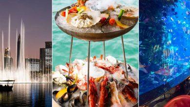 Photo of 5 أفضل المطاعم في دبي خلال سنة 2019