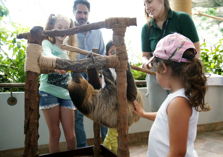 ذا جرين بلانيت تطلق باقة جديدة مناللقاءات التفاعلية الفريدة مع الحيوانات