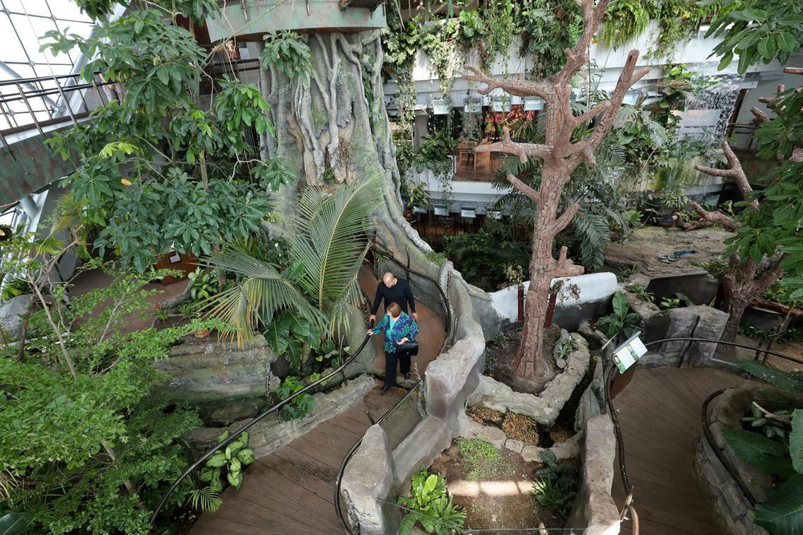 حديقة ذا غرين بلانيت