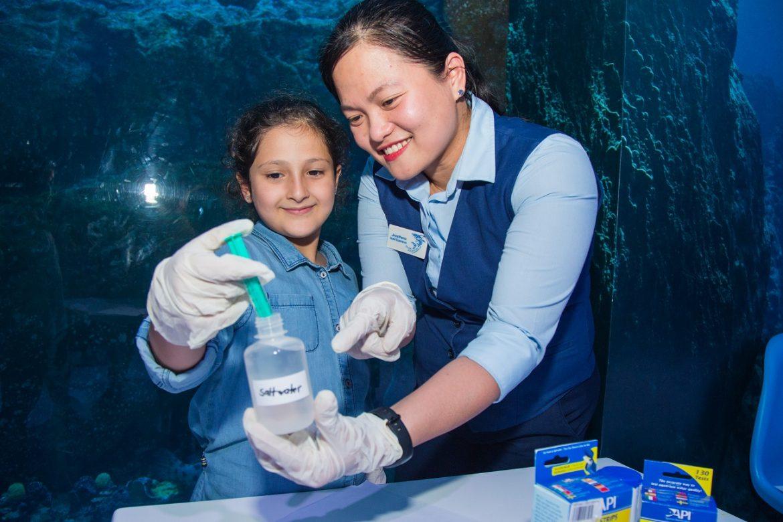 مخيم عالم الأحياء الصغير في دبي أكواريوم وحديقة الحيوانات المائية