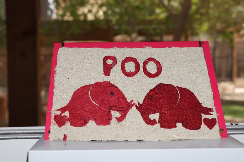 ورق مصنوع من فضلات الفيلة