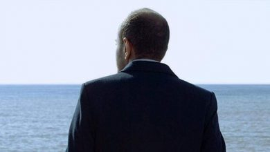 صورة سينما عقيل تكشف عن برنامجها السينمائي ليبانون إن فوكوس