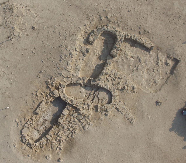 أبوظبي تكتشف أقدم لؤلؤة في العالم في جزيرة مروّح