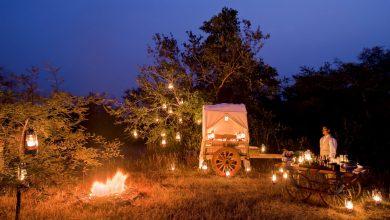 Photo of سفاري تاج تنظم تجربة سفاري مميزة مع قبيلة باردهي في الهند
