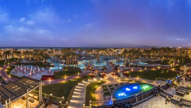 Rh_Seagate_Sharm_General_17