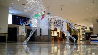 Photo of احتفالات سيتي سنتر مردف باليوم الوطني الإماراتي الـ48
