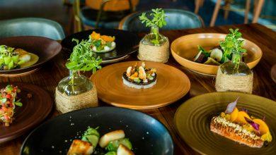صورة مطعم فولي من نك آند سكوت يطلق قائمة طعام جديدة