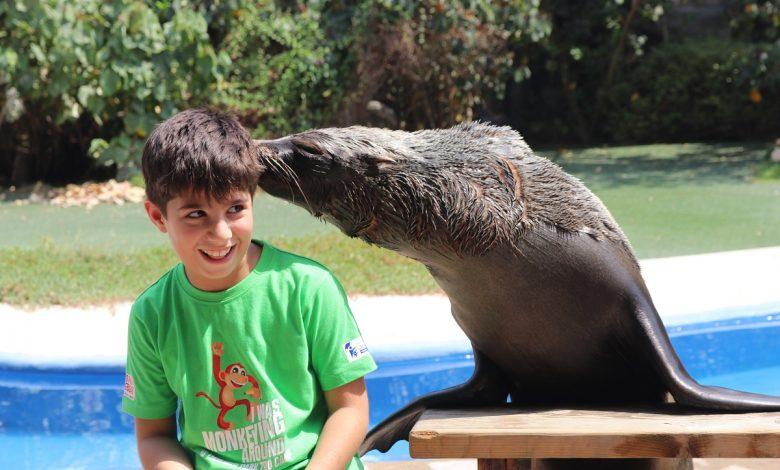 حديقة الإمارات للحيوانات تنظم المخيم الشتوي للأطفال 2019