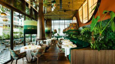 Photo of مطعم أمازونيكو يتيح لضيوفه الإحتفال برأس السنة دون حدّ أدنى للإنفاق