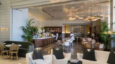 Photo of مطعم تاشاس يطلق قائمة جديدة من الأطباق النباتية الشهية في دبي
