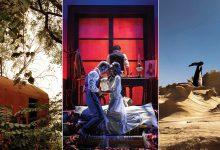 Photo of أهم 5 فعاليات ثقافية في الإمارات خلال يناير 2020