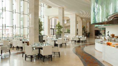Photo of مطعم أوليا يقدم تجارب طهي فاخرة وجديدة تُناسب الذواقة