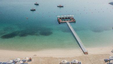 Photo of منتجع وسبادبل تري من هيلتون جزيرة المرجان يكشف النقاب عن حمام السباحة البحري