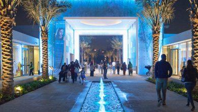 صورة 5 انشطة تستحق التجربة في حديقة ام الامارات ابوظبي