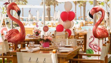 صورة منتجع وسبا نيكي بيتش دبي يطلق برنش أيام السبت الوردية