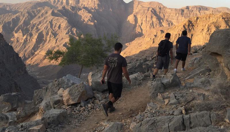 الصخور الأحفورية