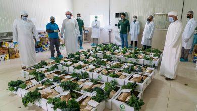 Photo of هيئة الشارقة للاستثمار توفر خضروات عضوية مجاناً للأسر المتعففة في الشارقة
