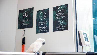 صورة ذا جرين بلانيت تفتتح أبوابها من جديد وتوفر طعام مجاني للضيوف