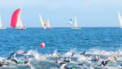 صورة دبي تنظم فعالية السباحة كينغ أند كوين سويم 2020
